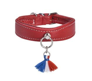 BERCY COLLIER CHIEN BOBBY CUIR ROUGE