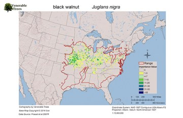 Range map of black walnut
