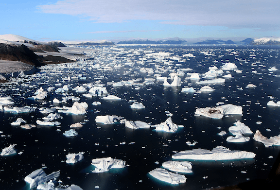 Floating sea ice. (Image Credit: Creative Commons)