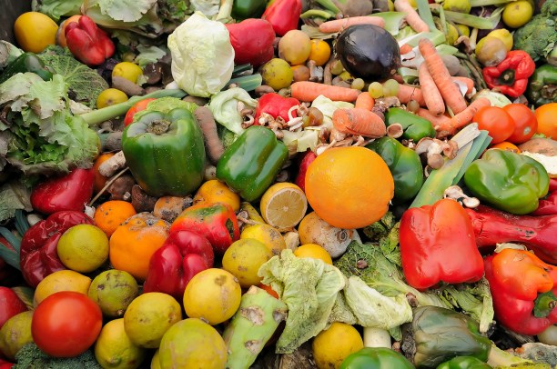 Rotten fruit and vegetable waste from a dumpster. (Photo Credit: Stockcube / Bigstock.com)