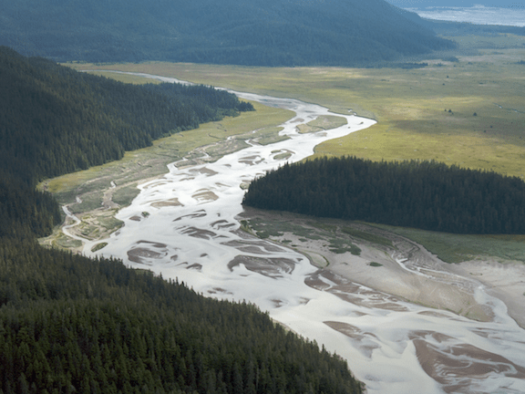The untouched Stikine River (Image: WikiMedia Commons)