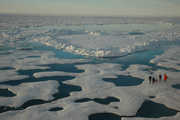 Meltwater ponds in the Arctic, as seen from the USCG Icebreaker HEALY. Arctic Ocean, Canada Basin. July 22, 2005. (Image Credit: Jeremy Potter NOAA/OAR/OER)