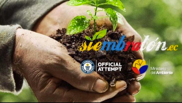 Promotional Ad for Reforestation Day. (Image Credit: Ministerio de Medio Ambiente)