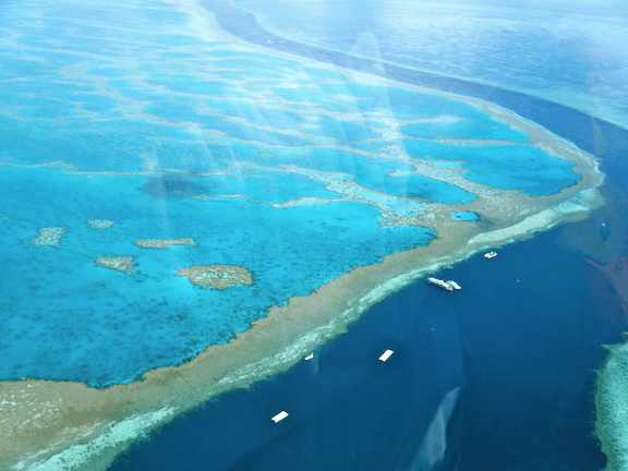 Great Barrier Reef at the Whitsunday Islands, Australia. (Photo Credit: Sarah Ackerman / Flickr)