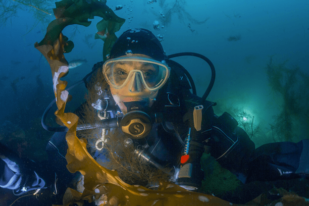 Dr. Sylvia Earle at Cashes Ledge, August 2015. (Photo Credit: Kip Evans)