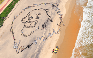 Thousands of South African youths form a giant human lion in partnership with artist John Quigley. (Photo: Shayne Robinson, Greenpeace, SpectralQ via green4ema)