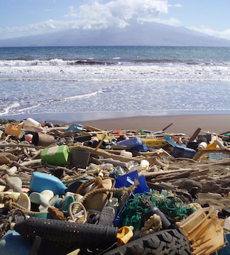 Debris on the beach of Kanapou Bay, Kaho'olawe, Hawaii. (Photo Credit: NOAA)