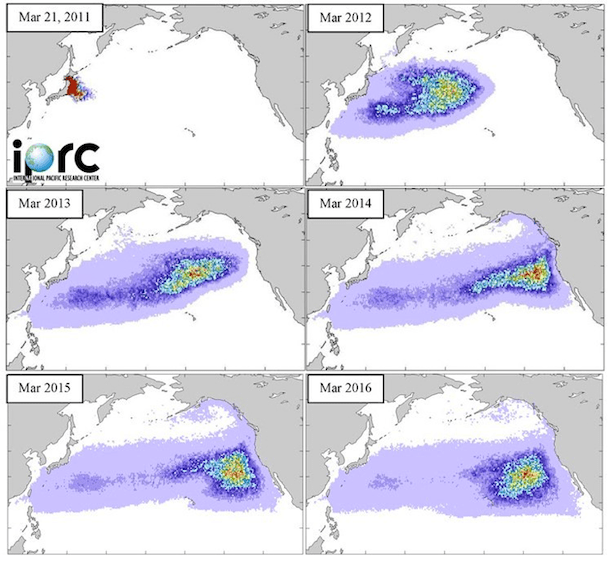 2011 tsunami debris movement mapping. (Image: International Pacific Research Center)