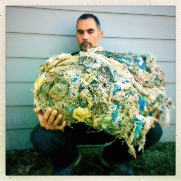 Dr. Marcus Eriksen of the 5 Gyres Institute with a 400-500 plastic bag gastrolith - stomach contents taken from a a camel in Dubai. (Photo Credit: B Waymouth)