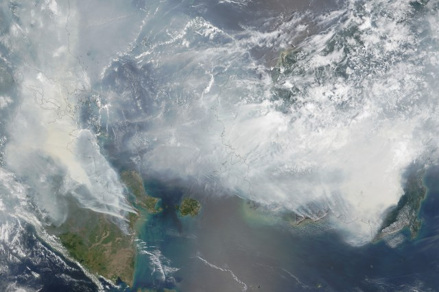 "From NASA's Adam Voiland: ""As seen in this September 24 image from the Moderate Resolution Imaging Spectroradiometer (MODIS) on NASA's Terra satellite... Thick gray smoke hovers over both islands and has triggered air quality alerts and health warnings in Indonesia and neighboring countries. Visibility has plummeted."" Image captured on September 24, 2015. (Photo Credit: NASA)"