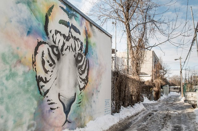 The mural at the entrance to Catherine and her neighbours' alley, between Marquette and Fabre Streets. The borough had allocated a budget for the mural, painted by one of the members of MU. (© Adrienne Surprenant)