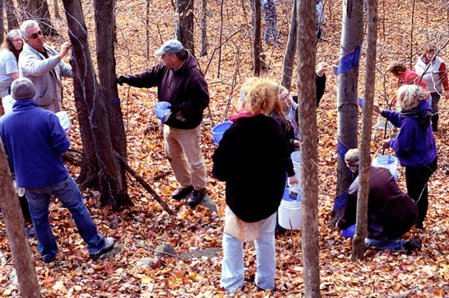 Volunteers painting one of several 1/3 mile Blued Trees measures, in Rensselaer County, New York. (Photo Credit: Jack Baran)