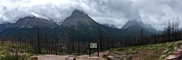 Going-to-the-sun road, Glacier National Park. (Photo Credit: Monica Heger)