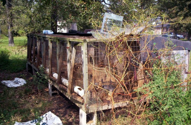 A puppy mill in the rural United States. (Photo Credit: PETA)