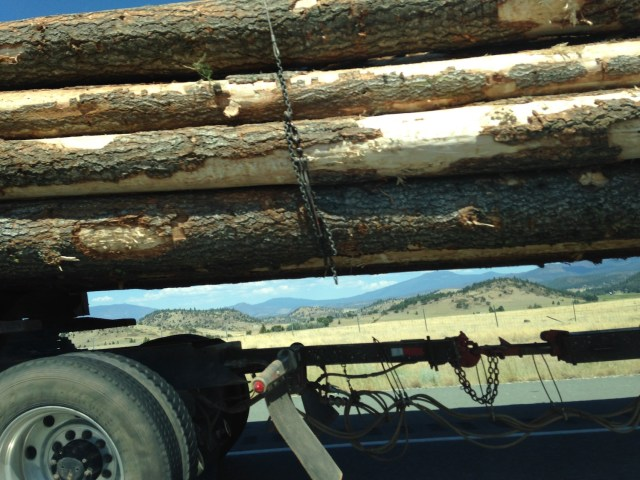 Logging truck seen on the road. (Photo Credit: Nick Marinoff)