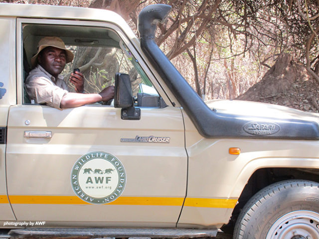 In August, Simon Muchatibaya joined AWF as the Technical Advisor in Zimbabwe's Mana Pools National Park. (Photo: African Wildlife Foundation)