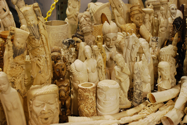 Confiscated ivory that was eventually crushed by the USFWS. (Photo: Kate Miyamoto / USFWS)