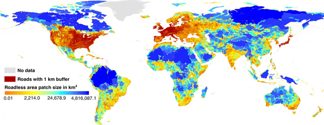 This map shows the world's roadless areas, with larger tracts of wilderness in blue. (Map: P. Ibisch et al., Science (2016))