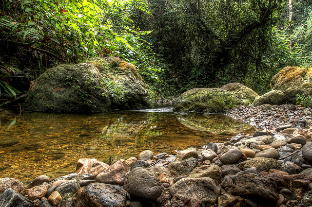 The Buluh River in the Leuser Ecosystem in Indonesia (Photo: buitenzorger / Flickr)