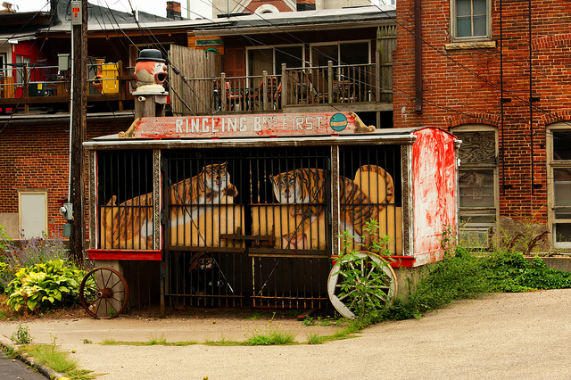 An old Ringling Bros. Circus wagon in Iowa. (Photo: Carl Wycoff / Flickr)