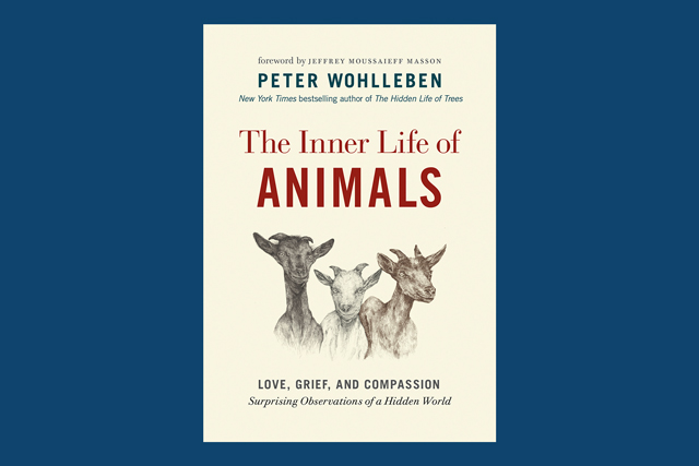 The Inner Life of Animals, by Peter Wohlleben.