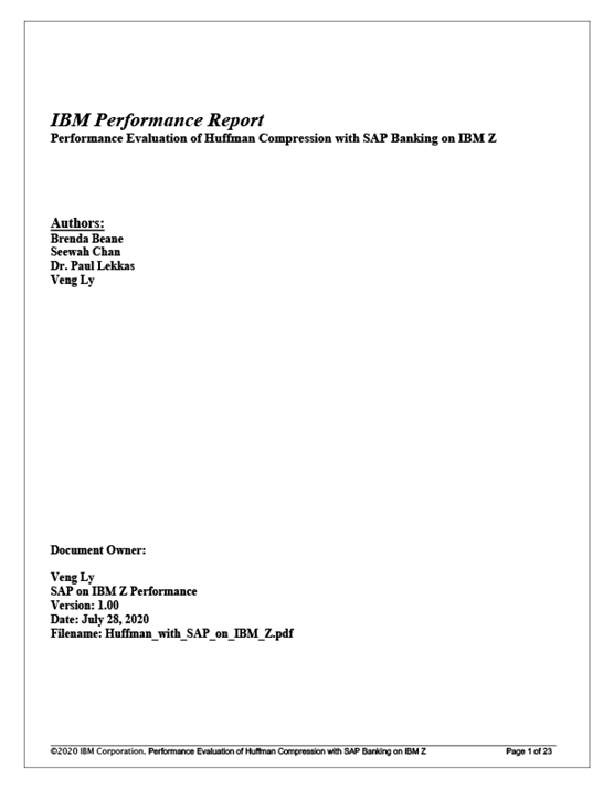 IBM Performance Report