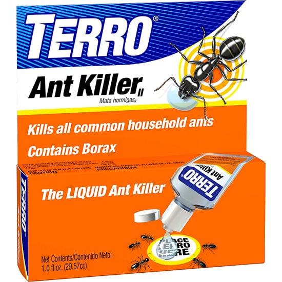 Ants In Garden Black Kill Borax