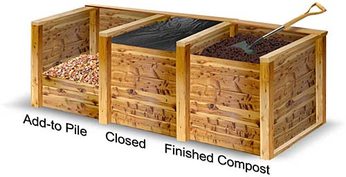 Vegetable Garden Box Images