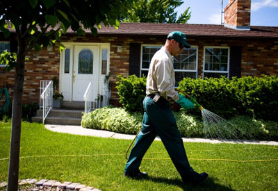 Lawn Pesticides and Your Health  Organic Lawn Care 101