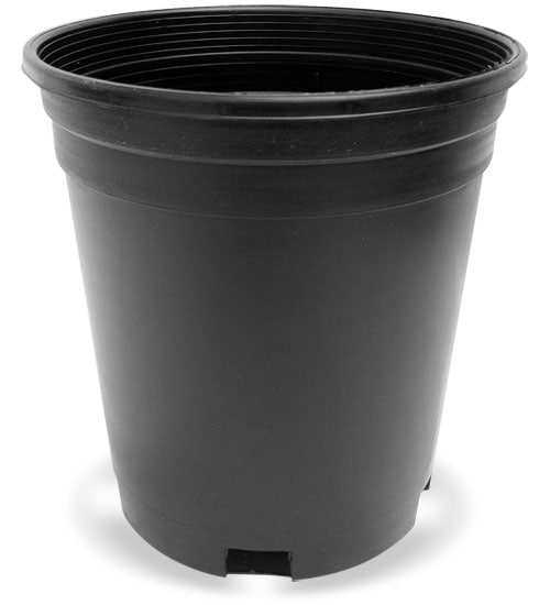 Plastic Nursery Pots by Pro Cal  Planet Natural