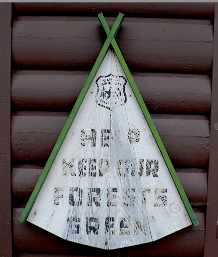 keep forests green