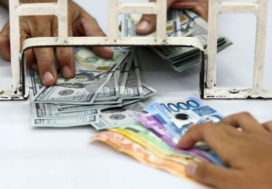 Remittances reach $30 billion in 11 months