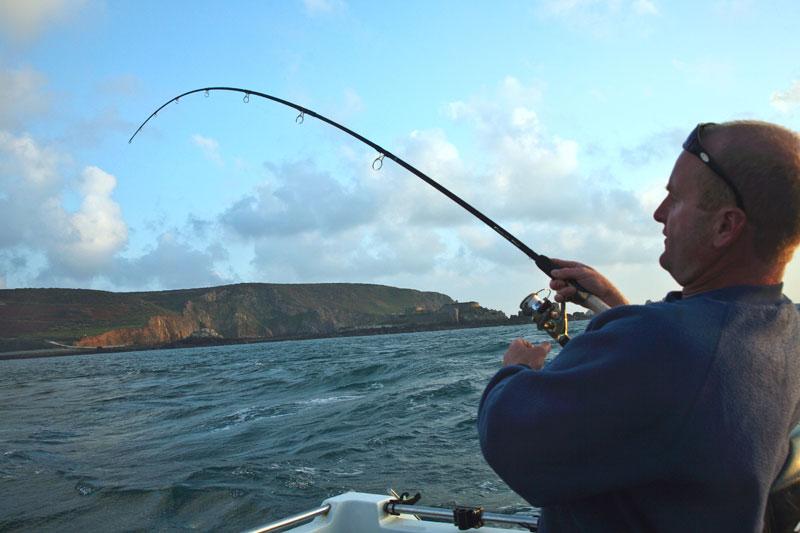 a light rod bends as an Alderney bass dives