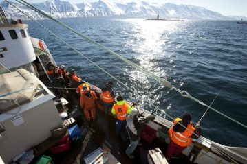 charter boat fishing european championships at Dalvik