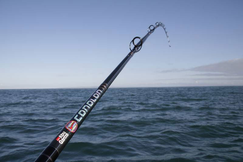 the Abu Conolon Travel Combo rod as an uptide rod in action