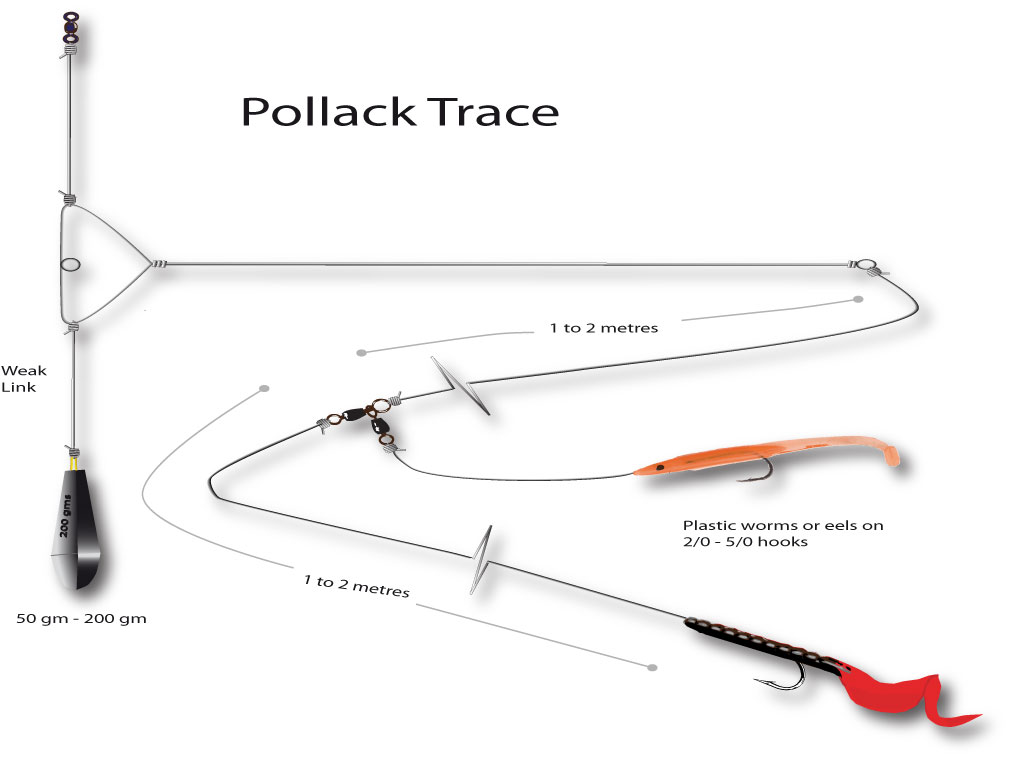 a two hook pollack trace diagram for fishing Orkney
