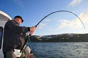 an angler's rod take a serious bend with a halibut