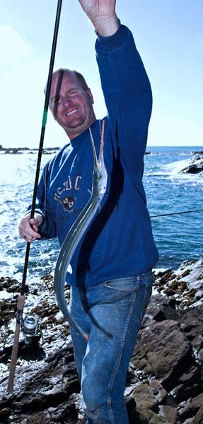 species ID garfish
