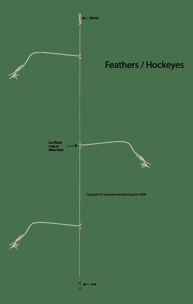 the hokeye rig