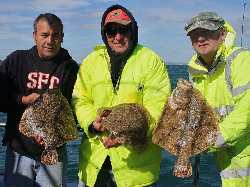 a brace of turbot and a brill from the Shambles Bank
