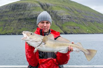 a cod for Ally