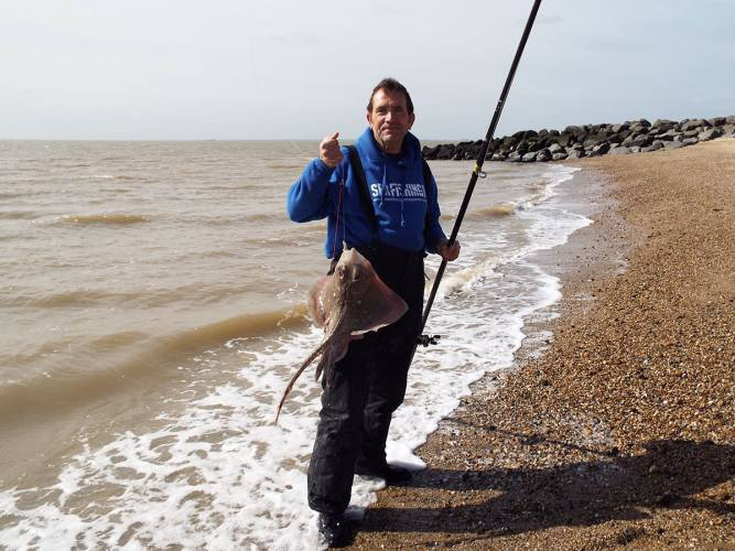 fishing St Osyth beach thornback ray