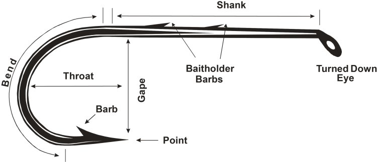 Anatomy of a Fishing Hook parts