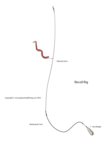 diagram of the recoil rig