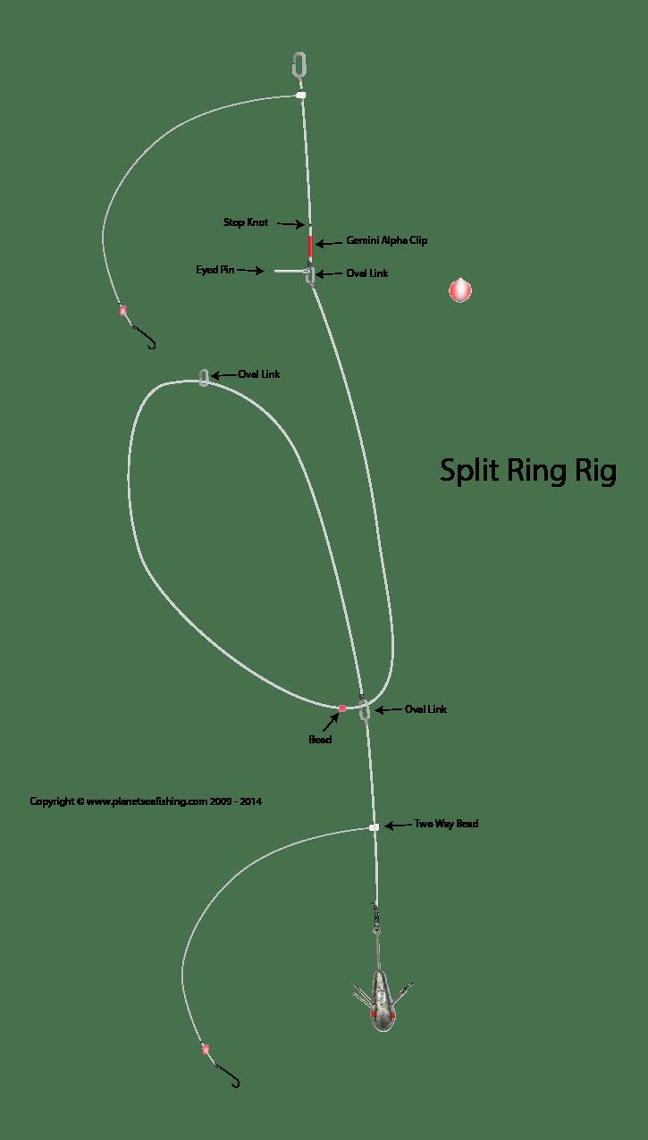split ring rig