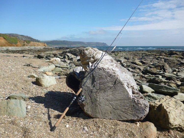 Locating South Devon Bass - Exploring the south Devon coastline