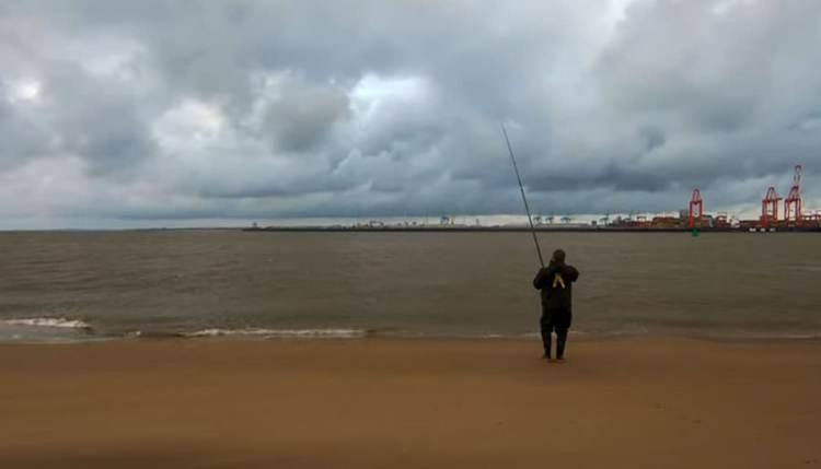 Mersey thornback fishing