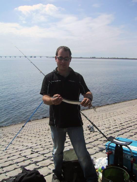 Dutch garfish