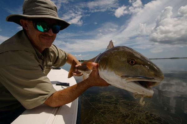 A TBT shot of a redfish on a Baitbuster. Photo by Capt. John Kumiski