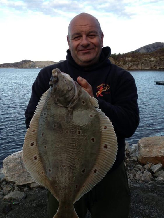 norway plaice